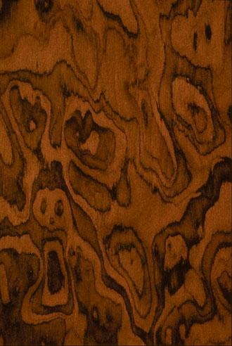 Walnut Burl By Brookside Veneers Bhi Elevators