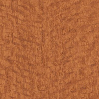 Lacewood by Formica